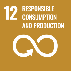 Sustainable goal 12, responsible consumption and production